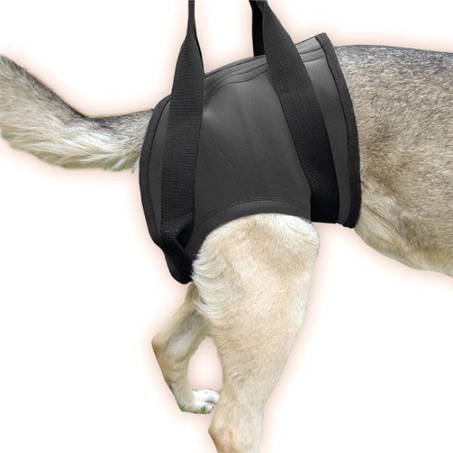 Gehhilfe Geschirr für Hunde Julius K9  HINTEN