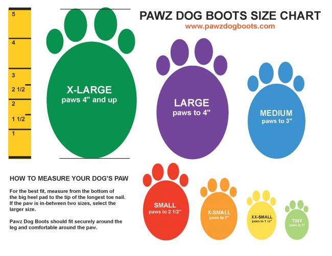 Top Paw Dog Shoes
